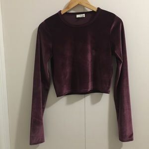Aritzia Wilfred Free Velour Crop Top